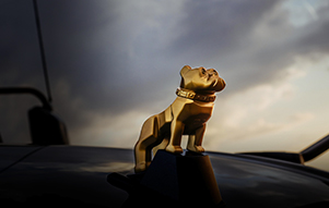 Mack Trucks Gold Bulldog